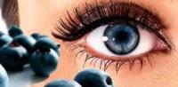Черника: полезные свойства и противопоказания