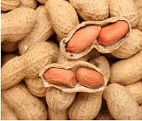 Арахис: состав, калорийность, норма в день, польза и вред для взрослых и детей