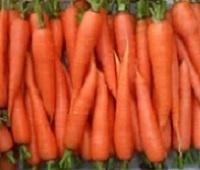 Морковь: состав, калории, польза и вред для организма человека