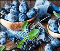 Сливы: польза и вред для здоровья