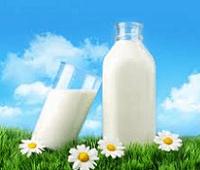 Чем полезно молоко