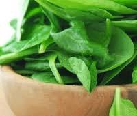 Польза и вред шпината для здоровья и диета на основе шпината