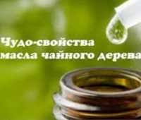 масло чайного дерева свойства и применение