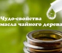 Масло чайного дерева: свойства, применение, рецепты, противопоказания