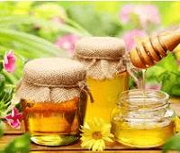 Мед: состав, калории, лечебные свойства и как проверить качество меда