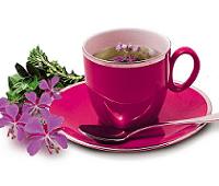 иван-чай ферментпция