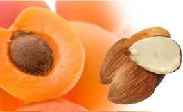косточки абрикос