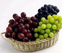 Виноград: состав, калорийность, норма в день, полезные свойства для мужчин, женщин и детей
