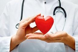 Боярышник: состав, полезные, лечебные свойства и противопоказания для взрослых и детей