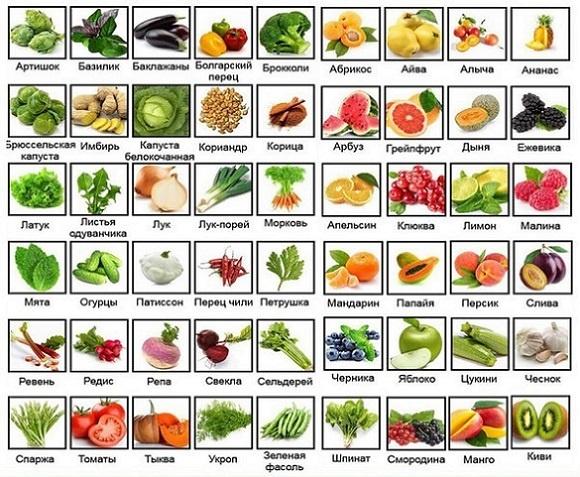 таблица-низкокалорийных-продуктов-овощи и фрукты