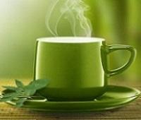 Зеленый чай с молоком, медом, мелиссой, жасмином и молочный улун: польза и вред для организма