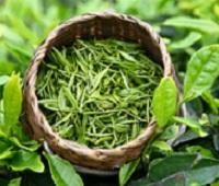 Зеленый чай: состав, калорийность, польза для здоровья и похудения