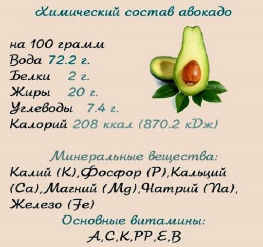 Авокадо: химический состав