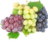 Чем полезен белый и черный виноград для организма