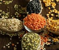 Чечевица: состав, калорийность, польза и вред. Чечевица для похудения