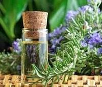 Масло розмарина: полезные свойства, рецепты, применение для здоровья и красоты