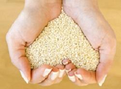 Белый и черный кунжут: состав, калорийность, полезные свойства и противопоказания для мужчин и женщин