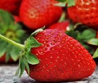 Клубника: состав, калорийность, польза и вред для здоровья и красоты