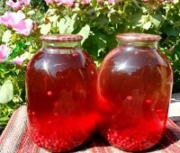Компот из красной смородины на зиму - 5 самых вкусных рецептов