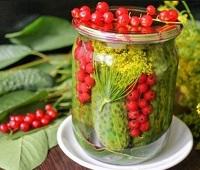 Огурцы с красной смородиной на зиму - 7 самых вкусных рецептов