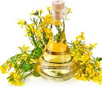 Рапсовое масло: состав, польза, вред, применение для здоровья и красоты