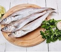 Путассу:  что за рыба, где водится, описание, фото, как приготовить, польза