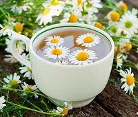 Ромашковый чай: состав, норма в день, как приготовить, как принимать, чем полезен и противопоказания