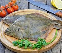 Камбала: что за рыба, описание, где водится, фото, калорийность, как приготовить, польза и вред для организма
