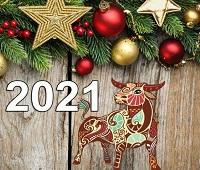 Новый год 2021: чего ждать, как встречать, что одеть, что готовить, что дарить