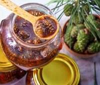 Варенье из сосновых шишек: состав, калорийность, польза, как приготовить, рецепты, как есть и вред