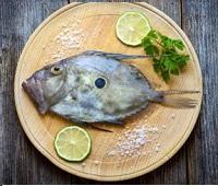 Рыба дори: что за рыба, где водится, описание, фото, как приготовить, польза