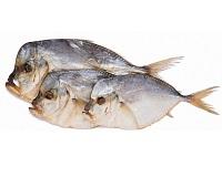 Рыба вомер - 8 самых простых и очень вкусных рецептов приготовления
