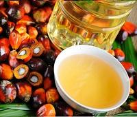 Пальмовое масло: вред и польза, из чего делают, в каких продуктах содержится, применение