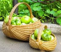 Зеленые помидоры: состав, калорийность, польза, где хранить, что приготовить, как есть и вред