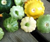Патиссоны: что за овощ, как выглядит, фото, польза, как приготовить и вред